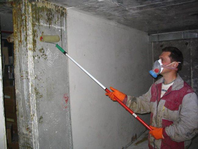 Как уничтожить колонии грибков
