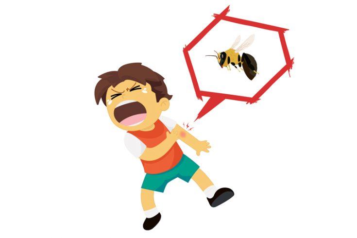 Что делать, если пчела укусила ребенка
