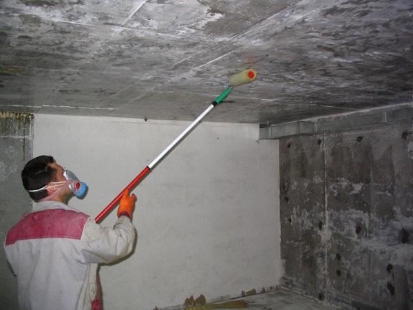 Как бороться с грибком в подвале