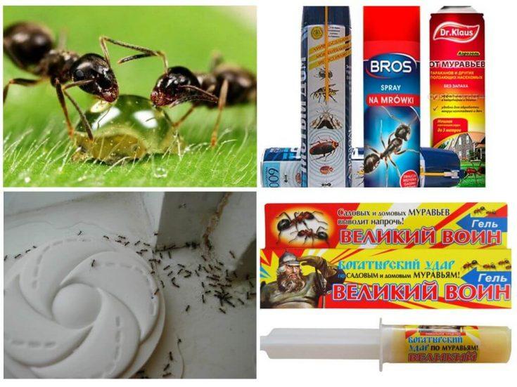 Борьба с помощью ядовитых веществ