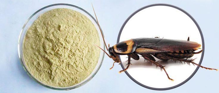 Порошки от тараканов