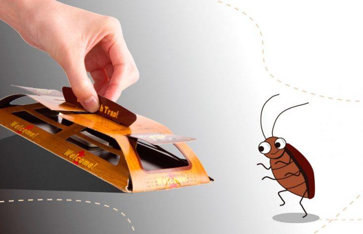 Как и чем травить тараканов самостоятельно