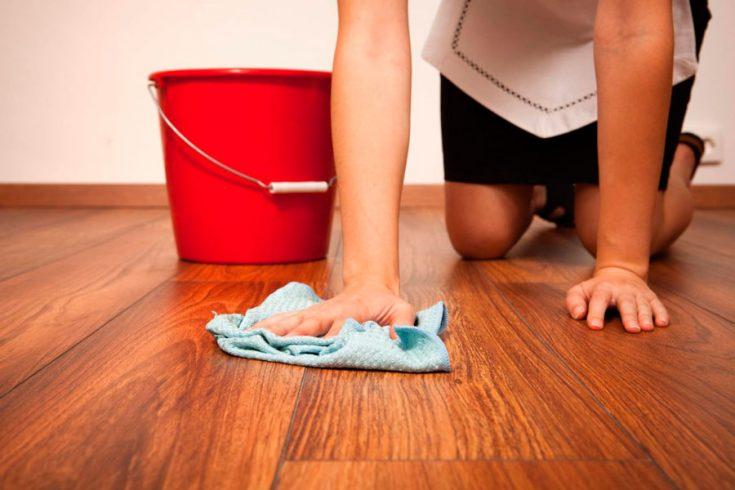 Как эффективно бороться с пылевым клещом