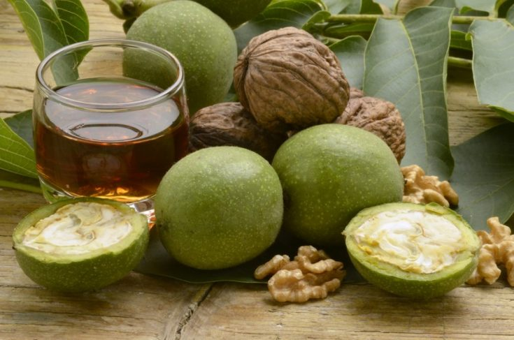 Зеленые грецкие орехи от глистов