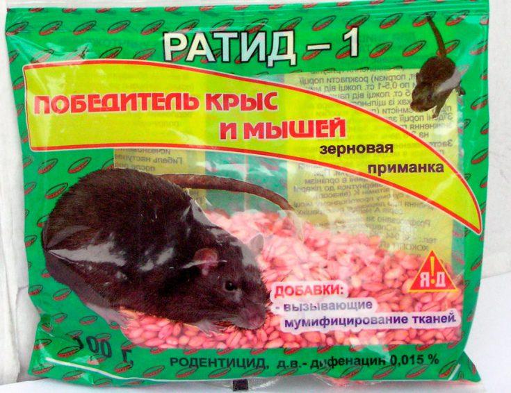 Ратид-1