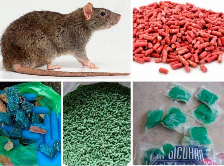 Крысиный яд