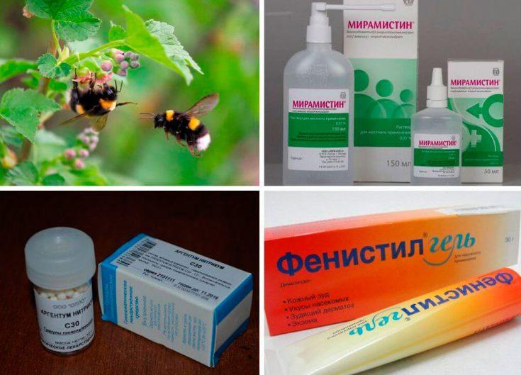 Лечение и обезболивание при укусах